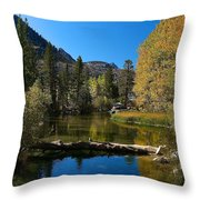 Eastern Sierras 13 Throw Pillow