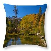 Eastern Sierras 16 Throw Pillow