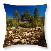 Eastern Sierras 21 Throw Pillow