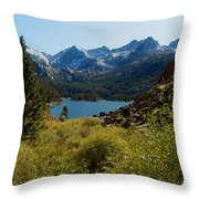 Eastern Sierras 22 Throw Pillow