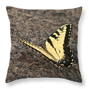 Eastern Tiger Swallowtail 8564 3241 Throw Pillow