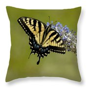 Eastern Tiger Swallowtail On Butterfly Bush Throw Pillow