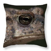 Eastern Toad Detail Throw Pillow