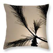 Eastern White Pine Throw Pillow