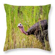 Eastern Wild Turkey - Longbeard Throw Pillow