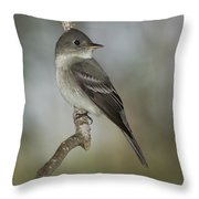 Eastern Wood-pewee Throw Pillow