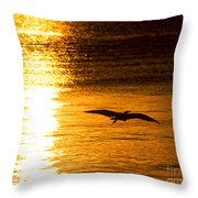 Easy Glider Throw Pillow