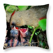 Eat Up Throw Pillow by Frozen in Time Fine Art Photography