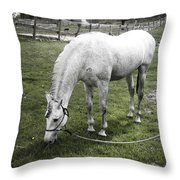 Eating After The Bath Throw Pillow