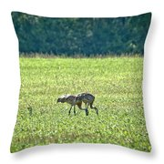 Eating Cranes Throw Pillow