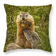 Eating Time Throw Pillow
