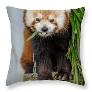 Eating With Mouth Full Throw Pillow
