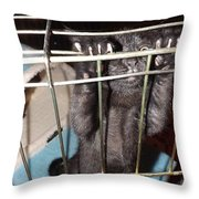 Ebony Hang In There Throw Pillow
