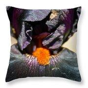 Ebony Iris Throw Pillow