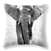 Ebony Ivory African Elephant Throw Pillow
