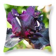 Ebony Violet Throw Pillow
