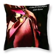 Ecclesiastes 3 Verse 1 Throw Pillow by Sara  Raber