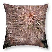Ecclesiastes Seasons Throw Pillow
