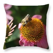 Echinacea And Bee Throw Pillow