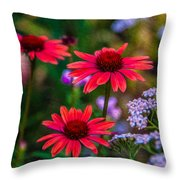 Echinacea And Yarrow Throw Pillow by Omaste Witkowski