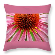 Echinacea Flower Upclose Filtered Throw Pillow