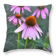 Echinacea Pallida Throw Pillow