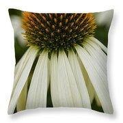 Echinacea Portrait Throw Pillow