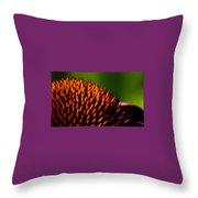Echinacea Up Close Throw Pillow