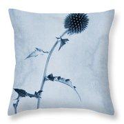 Echinops Ritro 'veitch's Blue' Cyanotype Throw Pillow