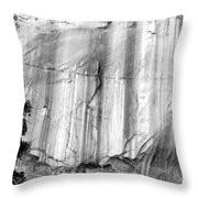 Echo Canyon Bw Throw Pillow