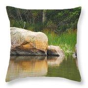 Echo Lake Reflection Throw Pillow
