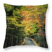 Echo Lake Road Throw Pillow