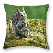 Echo Of An Eastern Screech Owl  Throw Pillow