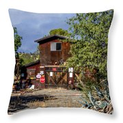 Eclecktic Building Signs Throw Pillow
