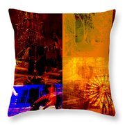 Eclectic Things Collage Throw Pillow