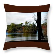 Eco Ambiance Throw Pillow