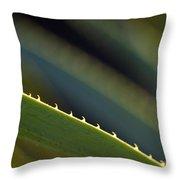 Edge Of A Sotol Leaf Throw Pillow