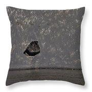 Edge Of The Yellowstone River   #4527 Throw Pillow