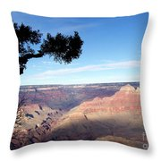 Edge Of Wonderment Throw Pillow by Janice Sakry