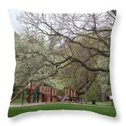 Edgewood Park New Haven Connecticut Throw Pillow