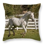 Effortless Gait Throw Pillow