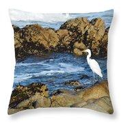 Egert Throw Pillow