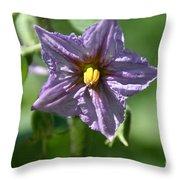 Egg Plant Blossom Throw Pillow