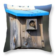 Egg Thief Throw Pillow