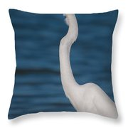 Egret 148 Throw Pillow