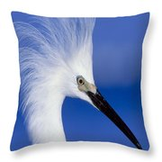 Egret 16 Throw Pillow