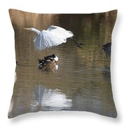 Egret And Geese At Gilbert  Riparian Preserve Throw Pillow