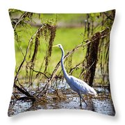 Egret At Corroborree Billabong Throw Pillow