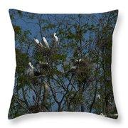 Egret Estuary   #6878 Throw Pillow