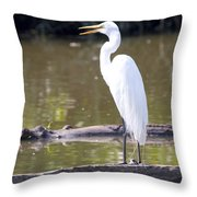 Egret Has A Lot To Say I Throw Pillow